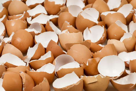 Background of many broken brown empty eggshells