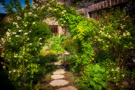 舗装路とトレリスの夏の庭 写真素材