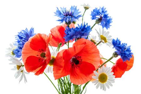 Boeket van wilde bloemen - klaprozen, margrieten, korenbloemen Stockfoto