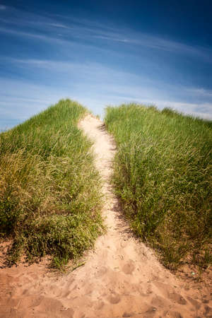 Sand path over dunes with beach grass in North Rustico, Prince Edward Island, Canada.