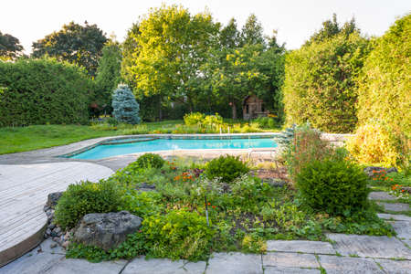 Backyard rock garden with outdoor inground residential private swimming pool and stone patio
