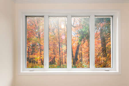 Large four pane window looking on colorful fall forest Stockfoto