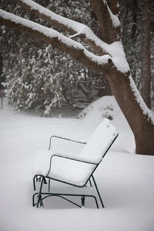 Metal bench covered with snow in winter park Banco de Imagens