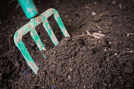 Garden fork turning  black composted soil in compost bin ready for gardening, close up. Stock Photo