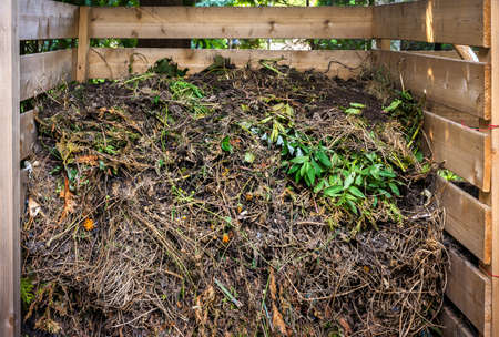 Organic yard waste in wooden compost box for backyard garden composting