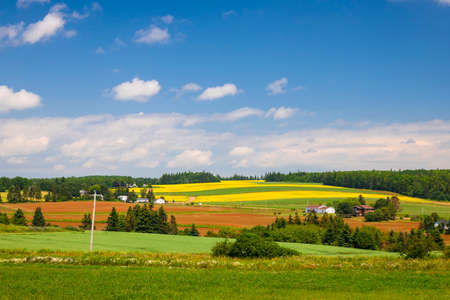 Summer landscape of farms and fields with red soil, Prince Edward Island, Canada. Stok Fotoğraf