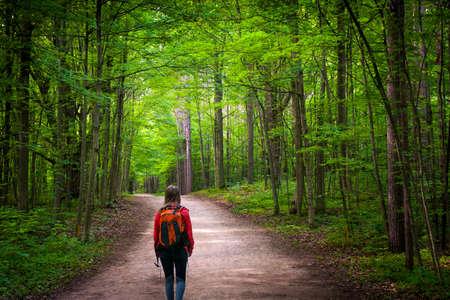 Jonge vrouwenwandelaar die met rugzak op wandelingssleep lopen in groen de zomerbos. Het natuurreservaat van Hilton Falls, Ontario, Canada.
