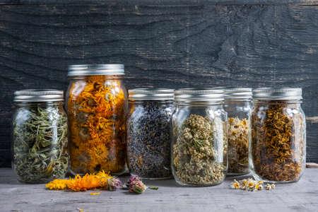 Diverse droge geneeskrachtige kruiden en kruidenthee in verscheidene glaskruiken op grijze houten achtergrond met exemplaarruimte