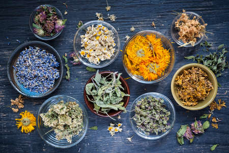 Diverse droge geneeskrachtige kruiden en kruidenthee in verscheidene kommen op blauwe houten achtergrond van hierboven