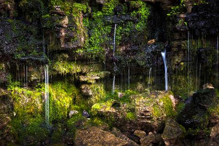 Moss 통해 작은 폭포 햇살과 바위를 덮여있다. 힐튼 폭포 보존 지역, 온타리오, 캐나다입니다. 스톡 콘텐츠