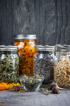 Various dried medicinal herbs and herbal teas in several glass jars on gray wood background