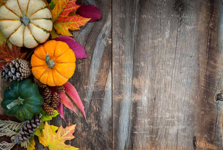 Fall background of autumn pumpkins and leaves decoration on rustic wood with copy space