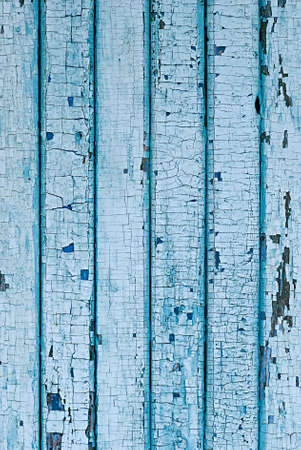 splintered: Wall from wooden planks with blue paint. Cracked paint on a wooden planks.