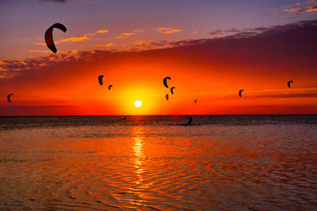 kiteboarding: Kite-surfing against a beautiful sunset. Many silhouettes of kites in the sky. Holidays on nature. Artistic picture. Beauty world. Stock Photo