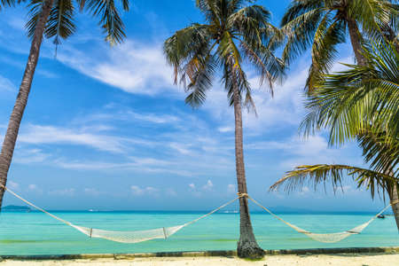 Amazing view of beautiful beach with palm trees, hammocks and transparent turquoise water. A great place to relax. Location: Ko Phi Phi Don island, Krabi province, Thailand, Andaman Sea. Artistic picture. Beauty world.