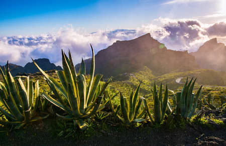 Beautiful view with clouds near Masca Gorge, Tenerife, Canary Islands, Spain
