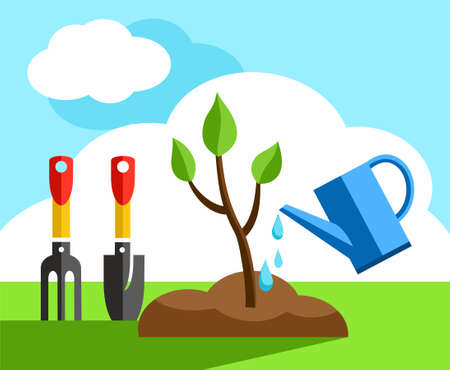 small tree: Tree, small, gardening, coloured illustrations. In the earth a small tree planted it and watered from a watering can. Color flat illustration. Landscaping, landscape design. Illustration