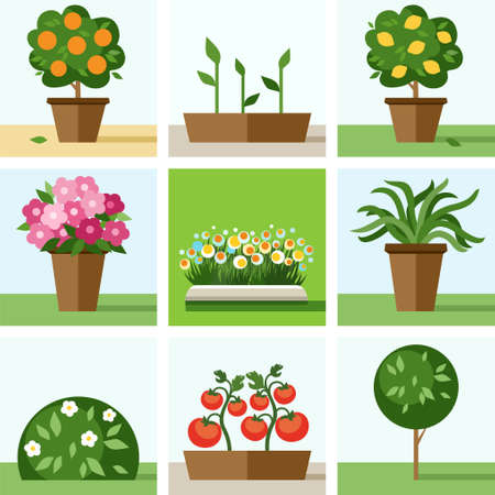 Garden, vegetable garden, flowers, trees, shrubs, flower beds, icons, colored. Colored flat icons, illustration with trees, shrubs, flowers, vegetable crops and seedlings. Garden, vegetable garden, landscaping.