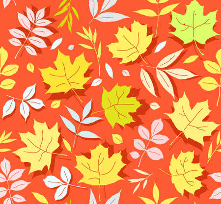 Autumn leaves of the tree pattern.
