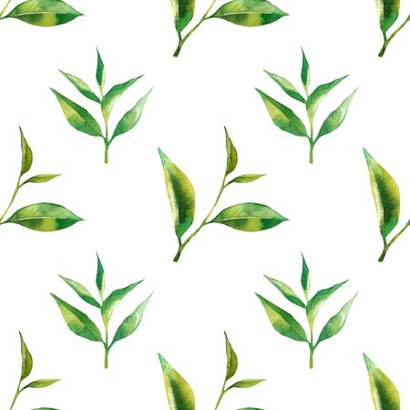 茶葉と花のシームレスなパターン。グリーン ティー支店は手に水彩画を描かれています。紙、繊維、包装用茶背景