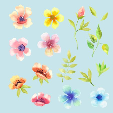 Floral design set watercolor. Spring flowers and leaves watercolor isolated on white background. Hand drawn watercolor spring background. For textile, greeting cards and wrapping