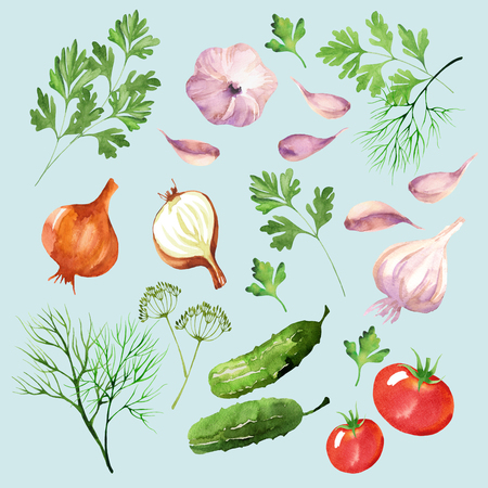 Food design set with tomatoes, cucumbers onions, dill, parsley, and garlic watercolor. Vegetable background in hand drawn style. Isolated on blue background. Stock Photo