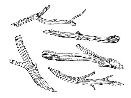 twigs: Design set with wood twigs. Tree branches in hand drawn style. Ink wooden sketch on white background