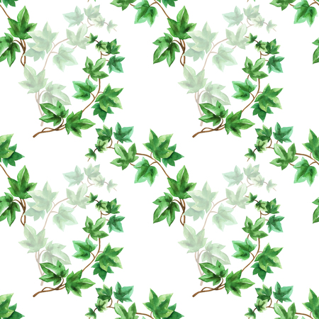 Floral seamless pattern with ivy branch watercolor in hand drawn sketch style on white background Stock fotó