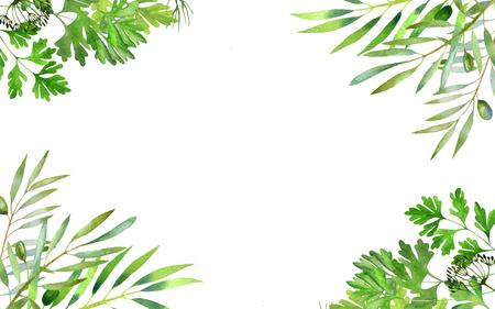 Green Branch pattern watercolor on white background Stok Fotoğraf