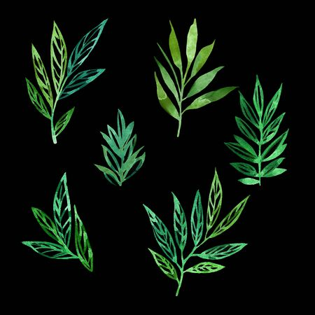 Leaves watercolor set. Hand drawn style. Isolated on black background .. Leafy background for textile, paper, decoration and wrapping