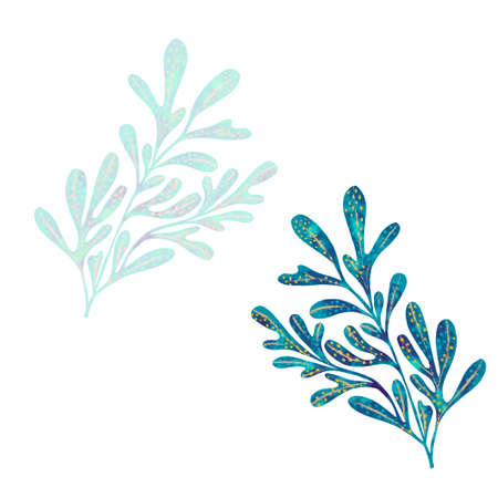 Abstract Seaweeds as design elements. Hand drawn digital illustration. Isolated. Red sea plant on white background.