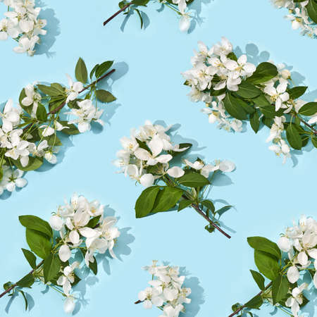 Apple tree floral pattern. Bright summer background. Spring white fruit flowers. Repeat spring texture. Creative trend composition. Many springtime elements. Blue Zdjęcie Seryjne