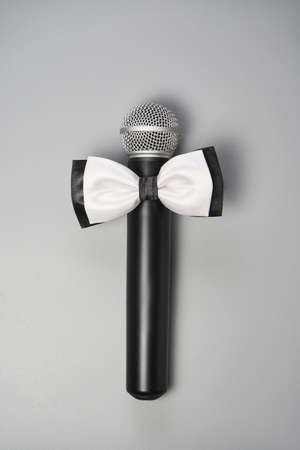 Boy microphone concept. Grey background. Singing artist. Public speaking card. Entertainment podcast person. Event manager. Vertical. Business presentation. For WC. Newcaster