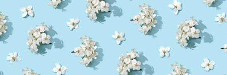 Apple tree floral pattern. Bright summer background. Spring white fruit flowers. Repeat spring texture. Creative trend composition. Many springtime elements. Horizontal banner. Blue