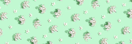 Apple tree floral pattern. Bright summer background. Spring white fruit flowers. Repeat spring texture. Creative trend composition. Many springtime elements. Horizontal banner. Green mint