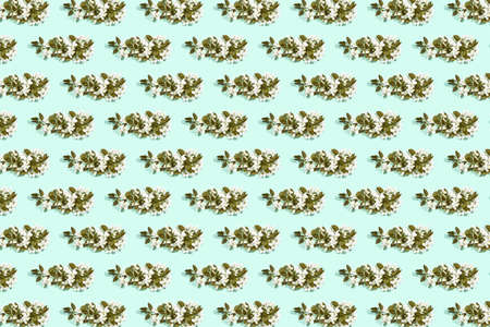 Apple tree floral pattern. Bright summer background. Spring white fruit flowers. Repeat spring texture. Creative trend composition. Many springtime elements. Green mint