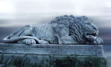 Sculpture of a lion made of stone. City of Lviv.