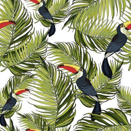 Seamless pattern toucan and palm branches. Beautiful drawings. art print  イラスト・ベクター素材