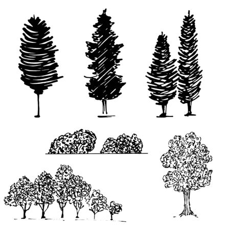 Silhouettes of trees, garden crops, park, black and white vector illustration. isolated on white. Pollution, wood resources, plant type theme details illustration. Park or forest territory planning.