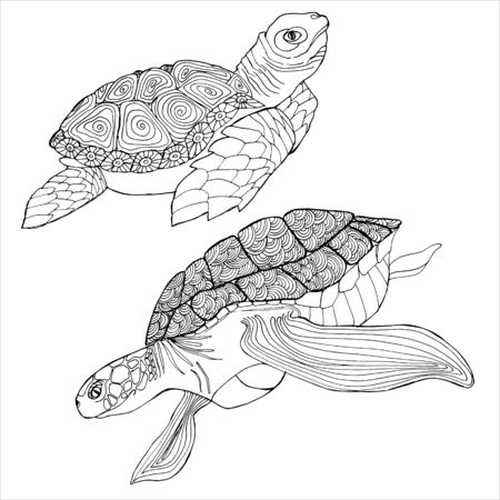 Sea Turtle Coloring Book. Hand drawing coloring book for children and adults. Beautiful drawings with patterns and small details. For anti-stress and children coloring page, emblem or tattoo.
