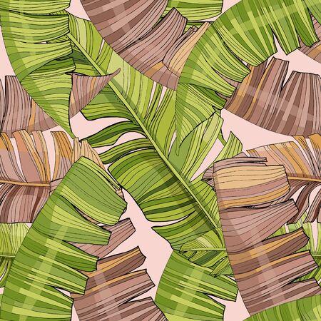 Tropical palm leaves, jungle leaf vector seamless floral pattern background. Vintage botanical illustration of wallpaper, fabric, decor