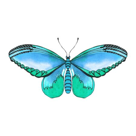 Beautiful watercolor butterfly on a white background. Wings with colorful patterns. Ideal for invitations, stickers, scrapbooking, stickers, banners, applications, posters and cards.