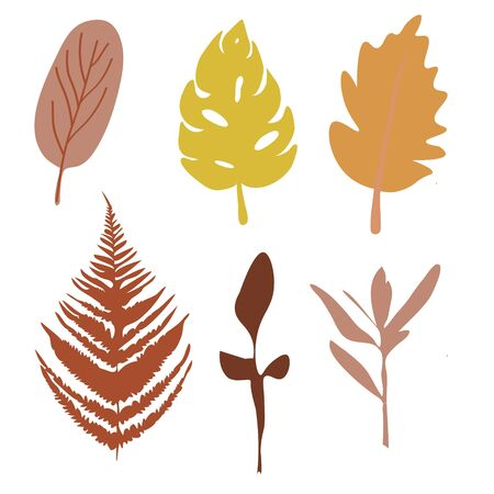 Colorful autumn leaves set isolated on white background. Flat style, vector illustration. Set of colorful autumn leaves. Isolated on a white background.