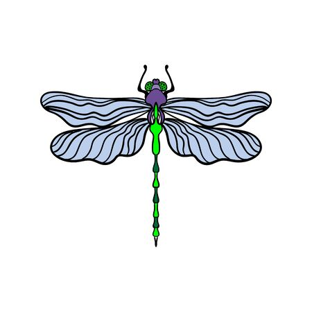 Bright dragonfly on a white background isolated. Black outline. Hand drawn vector illustration in vintage style.
