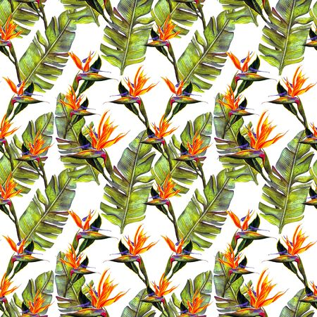 funny seamless wallpaper wallpaper of tropical green palm leaves and strelitzia flowers on a white background.