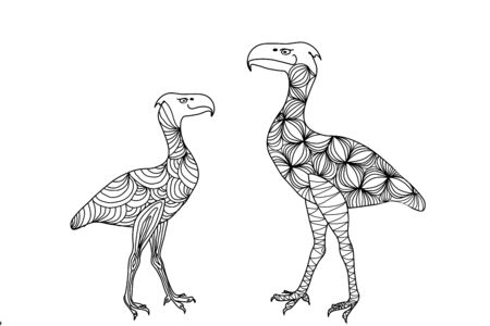 Bird dinosaur drawing lines, vector is suitable for any graphic design project. The prehistoric period.