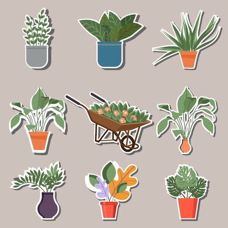 Home indoor plants and flowers in pots, stickers. Gardening, garden cart with beautiful flowers, different flowers and plants in pots. For the design of flyers, posters, advertisements, stickers.