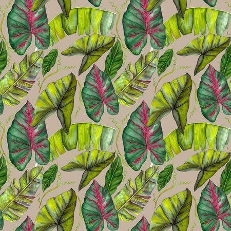 Seamless exotic pattern with tropical banana leaves in vintage style. Banco de Imagens