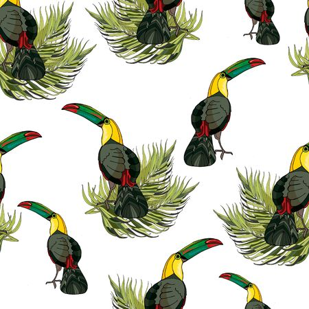 Seamless pattern toucan and palm branches. Beautiful drawings. art print for travel and leisure, fashion, spa and wellness, weddings, wallpapers, wrapping paper, scrapbooking