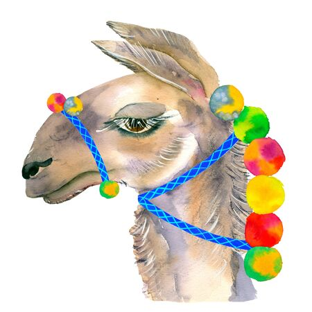 Cute hand drawn llama with national mexican ornaments, bells. Woolen Alpaca from Mexico. Travel. For projects, baby showers, wedding invitations, cards, posters and more. Banco de Imagens